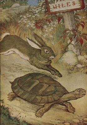 tortoise-and-hare.jpg