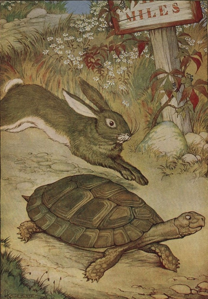 tortoise-and-hare1