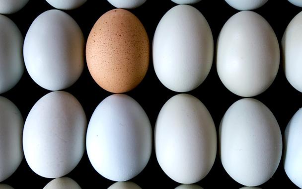 white-egg-brown-egg